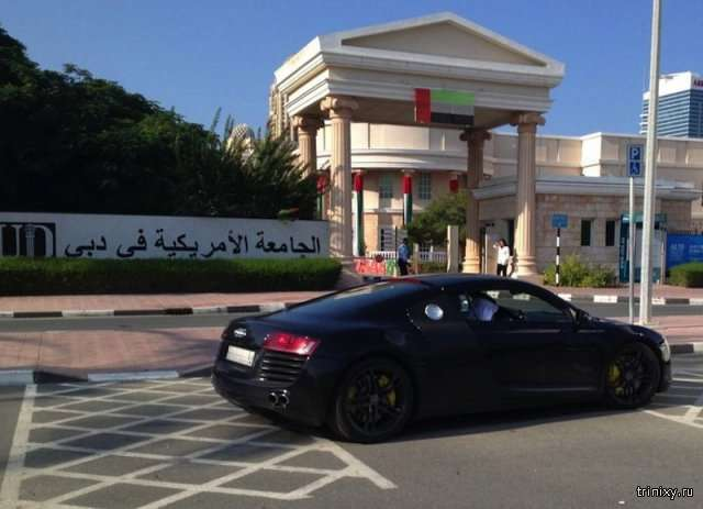Автомобілі на студентській парковці в Дубаї (19 фото)
