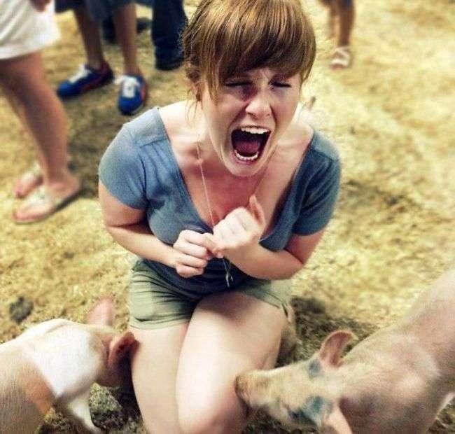 Тварини проти жінок (22 фото)