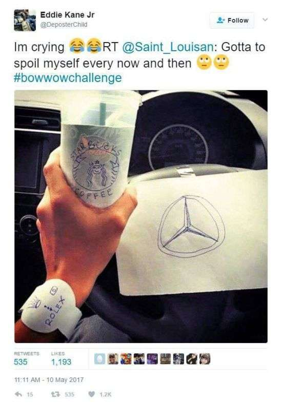 У мережі запустили челлендж #BowWowChallenge, щоб потролити репера Bow Wow (15 фото)