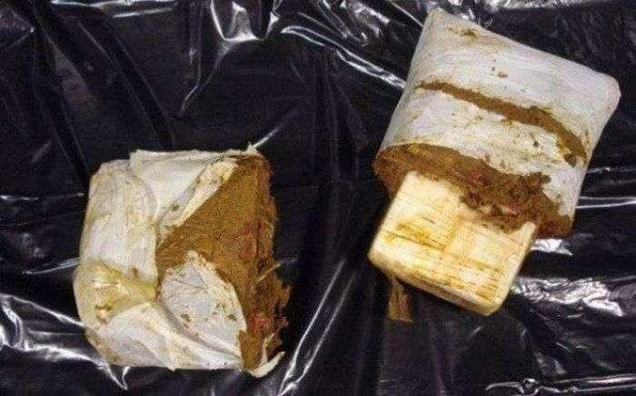 Заборонені предмети, що не потрапили до увязнених (12 фото)
