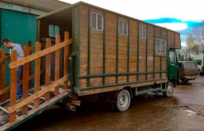 Будинки на колесах на базі списаних фургонів (16 фото)