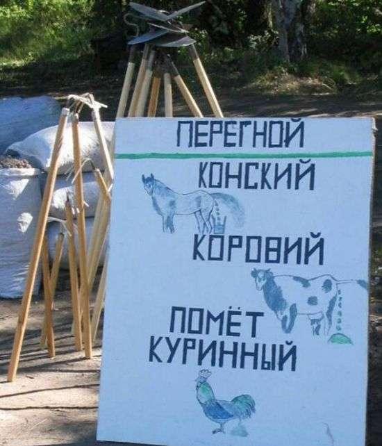 Народний креатив у вивісках, оголошеннях і табличках (33 фото)