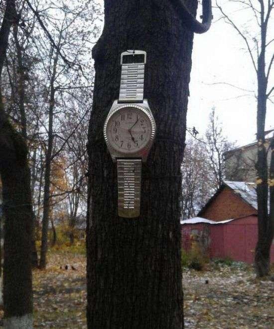 Фото, які можливо було зробити тільки в Росії. Частина 70 (38 фото)