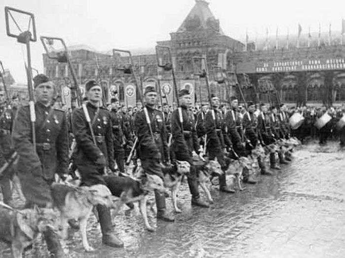 Цікаві факти про параді Перемоги 24 червня 1945 року (12 фото)