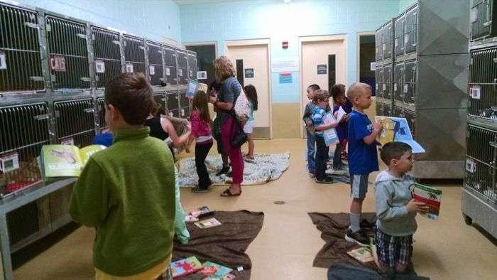 Американські школярі вшановували книги тварин з притулку (9 фото)