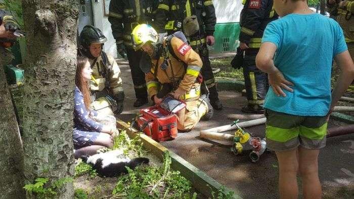 Пожежники врятували тварин (4 фото)
