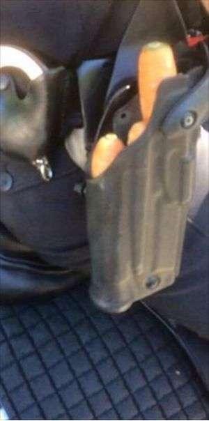 Основна зброя кінної поліції (2 фото)