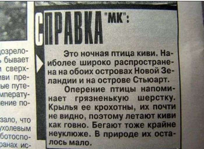 Незабутні заголовки «бульварної преси» (20 фото)